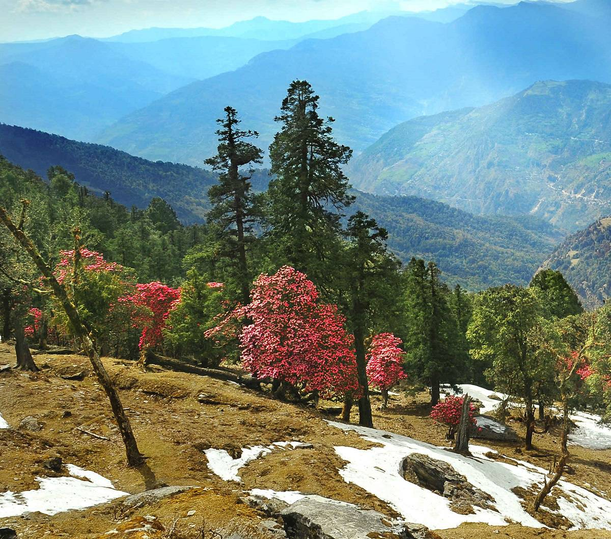 Almora Tourism - Places to visit in Almora, points of interest, travel guide