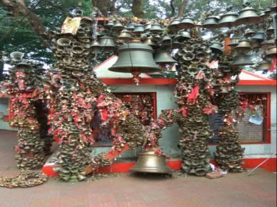 Ghorakhal Golu Devta Temple Nainital Lake