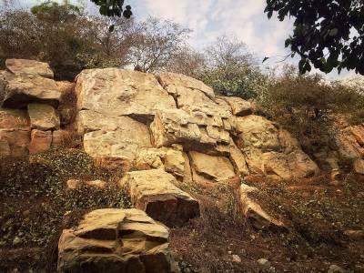 Govardhana Vrindavan