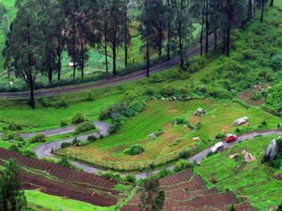 Ooty Nilgiris Tamil Nadu