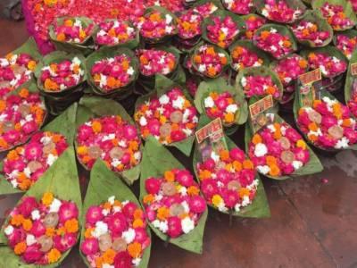 Things To Do in Har ki Pauri