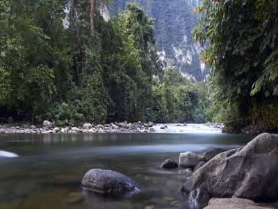 Gunung Mulu National Park Travel