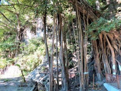 Vashistha Cave Rishikesh