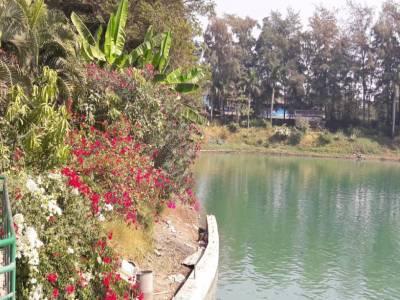 Mirasol Lake Garden Daman