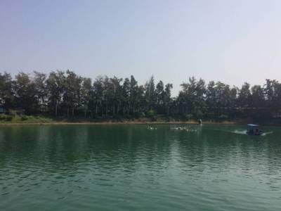 Mirasol Lake and Garden