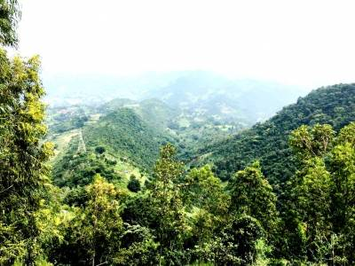Araku Valley Visakhapatnam
