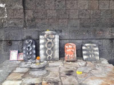 siddheshwar gadda yatra starat in solapur