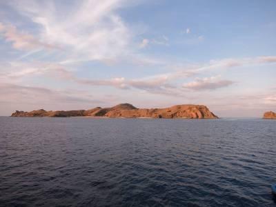 Komodo Dragon Island, Indonesia
