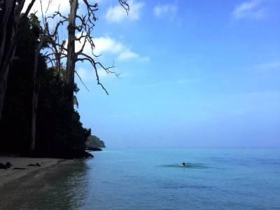 Elephant Beach, Andaman and Nicobar Islands