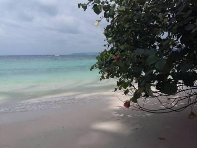 Elephant Beach in Andaman