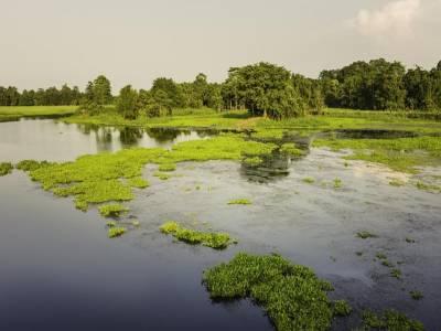 River Island of Majuli