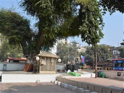 Siddi Saiyyed ni Jali in Gujarat