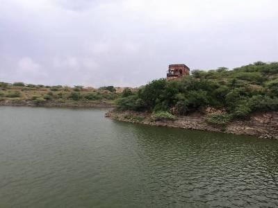 Balsamand Lake Jodhpur