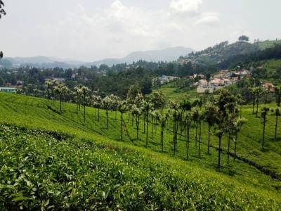 Coonoor Hill Station in Tamil Nadu