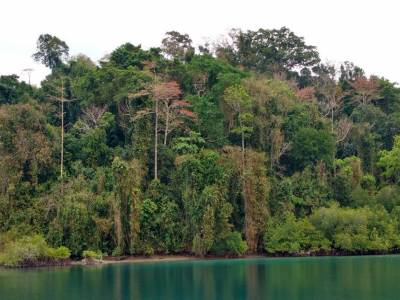 Jolly Buoy Island Andaman & Nicobar Islands